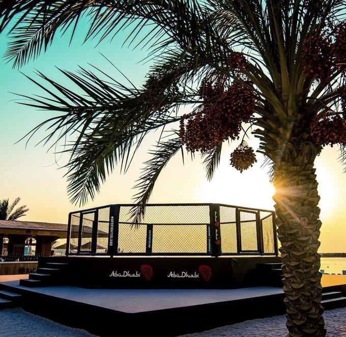 UFC Fight Island Abu Dhabi